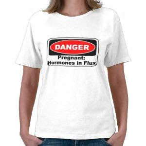 krw_danger_pregnancy_hormones_funny_tshirts-rfe9b13fc50dc4e4baf86637d2999b37c_f0cjv_512